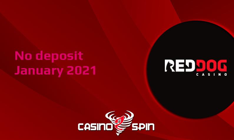 Latest no deposit bonus from Red Dog Casino January 2021